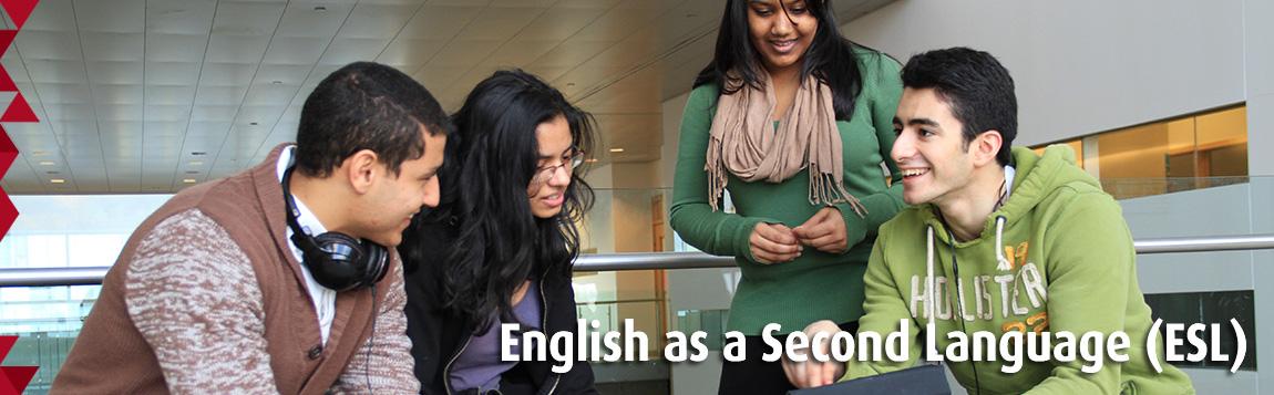 English Language Studies
